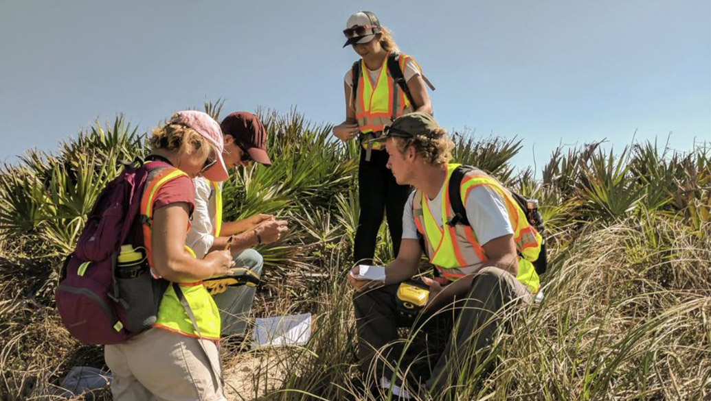 Students conduct research on beach sand dune